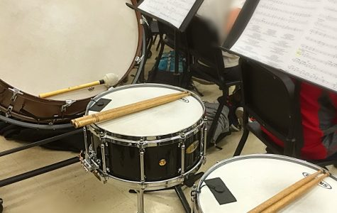 Drummer or percussionist? A question for the ages