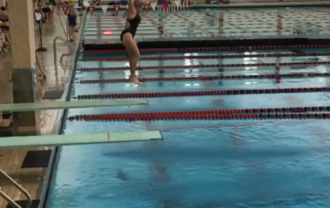 Junior swimmer Brucoli diving into new waters